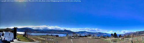 Therapy Vineyard Panorama