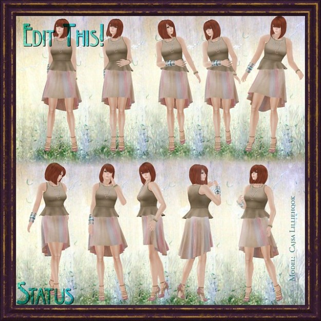 Edit This 10 Pose Set