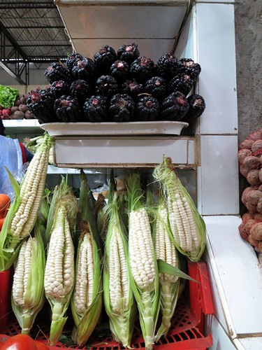 Purple corn, white corn