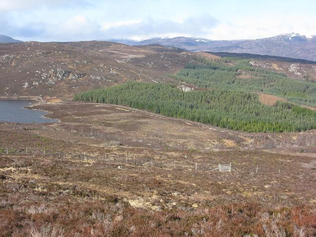 Loch Neaty - Loch Bruicheach walk