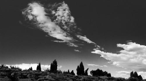 Les imatges del vespre by El Cantinal