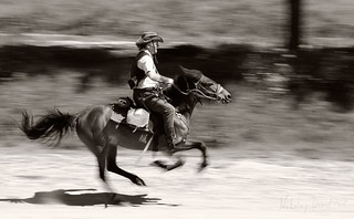 Rider on galloping horse