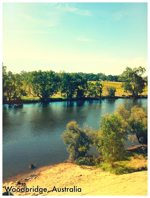 Начало реки Свон и фермерские посадки