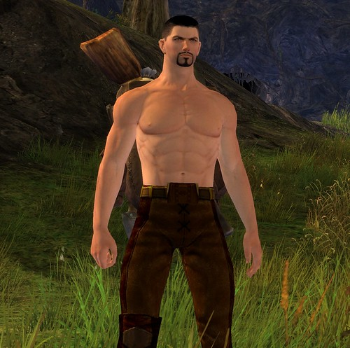 Constipated Human in Guild Wars 2