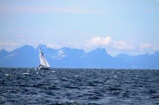 Flott seilvind på Vestfjorden. Denne båten krysset fra Bodø over til Lofoten