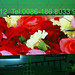 F-P12 2.304x4.608 mobile led display