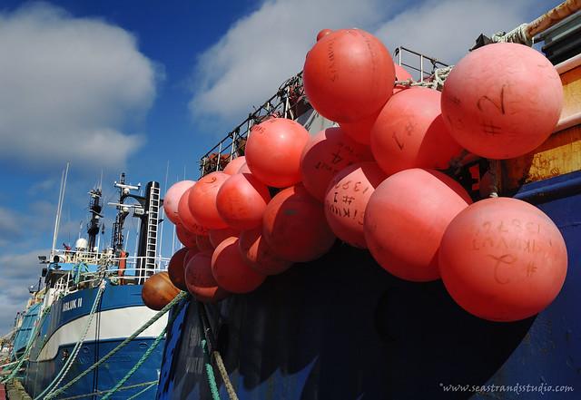 Buoy o buoy
