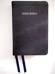 R. L. Allan English Standard Version Classic Edition Black Buffalo Goatskin ESV3 Bible
