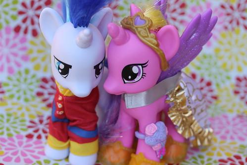 Shining Armor & Princess Cadance