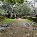 04 Viajefilos en Sri Lanka. Polonnaruwa 04
