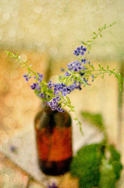 Day 109.365 - Flowers Still Life