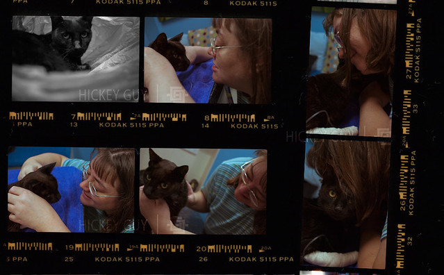 The Goodbye: Contact Sheet