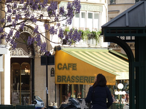 Looking up at Lilacs