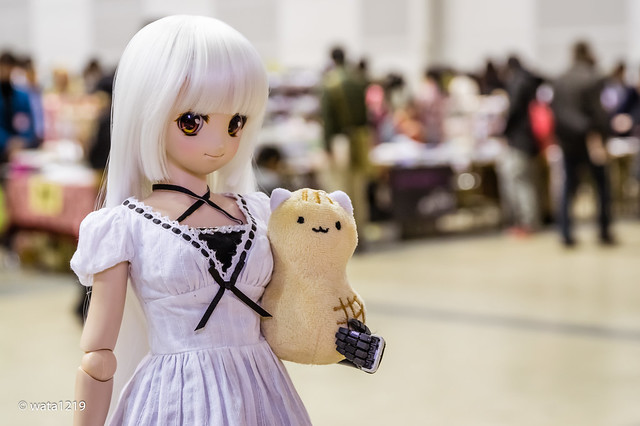 [I Doll vol.43] Mayu and Peanut Cat (3)