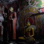 08 Viajefilos en Sri Lanka. Dambulla 07