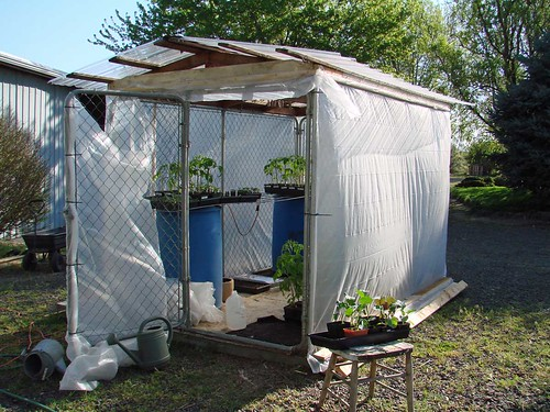 DogGreenhouse