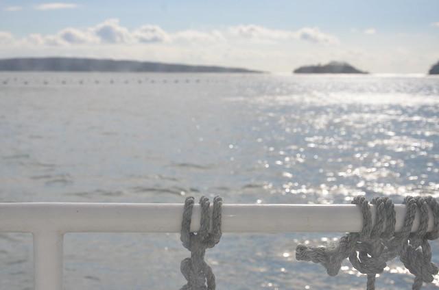 船から眺める穏やかな景色