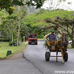 02 Vinyales en Cuba by viajefilos 043