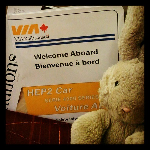 Travel Bunny is on the go again! Via @via_rail, quite possibly our favourite way to travel. Though kayaking is nice too.