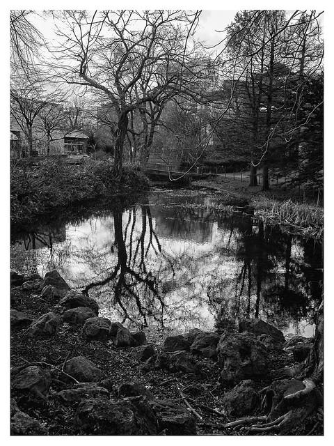 landscape in saporo