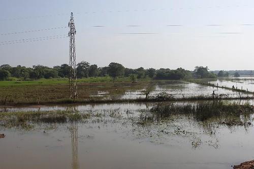 20130114_6985-drowned-landscape_Vga