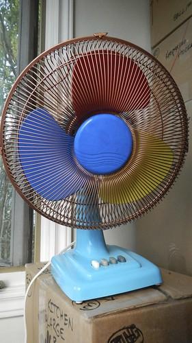 Fan of Summer 19