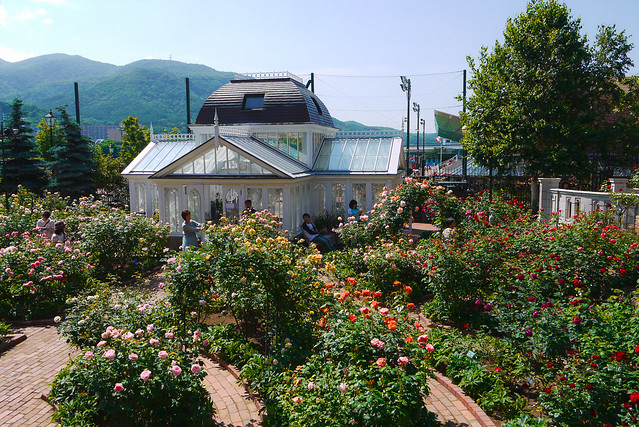 Hokkaido_day7_46