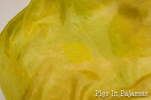 Solarfast dye leaf print