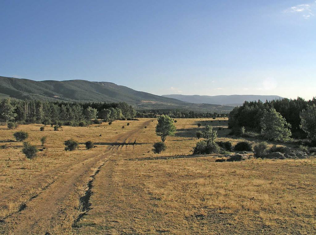 Aspecto de una Cañada Real para paso de ganado. Autor,