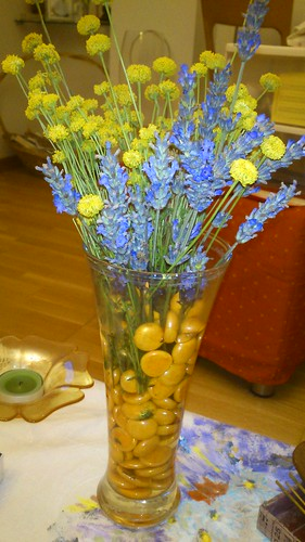 las flores del campo by alialba