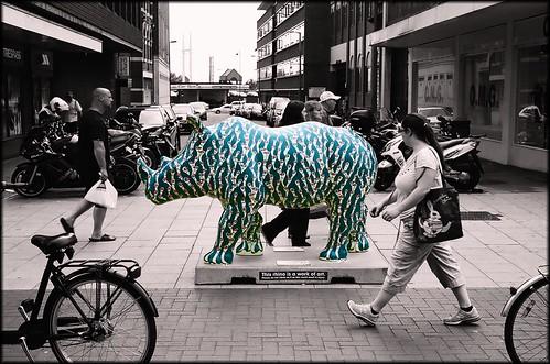 Walking with Rhinos: Where's Ralph by Davidap2009