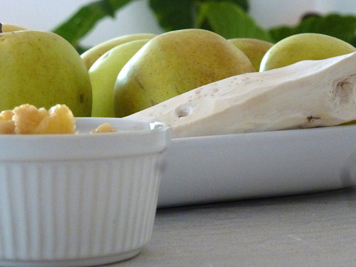 apple sauce with horseradish - Salsa di mele con rafano (kren)