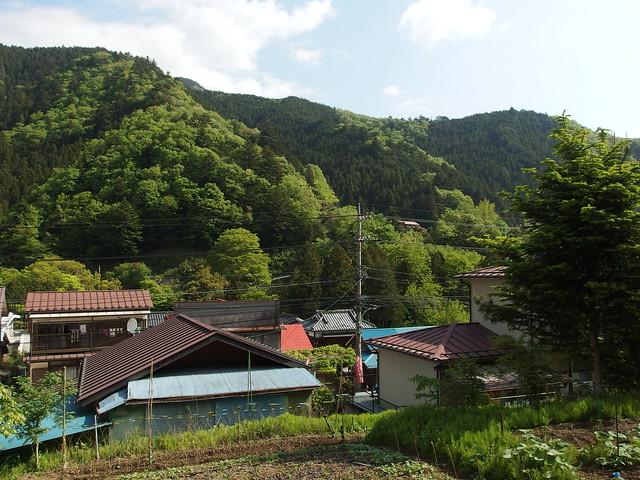Trail to Mount Usukiyama @ Hike from Hinohara to Lake Sagami