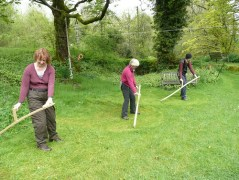 scything the lawn