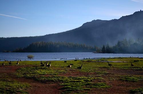 Silver Lake 02