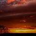 Sunset | Rawdon - Photostitch (Rework)