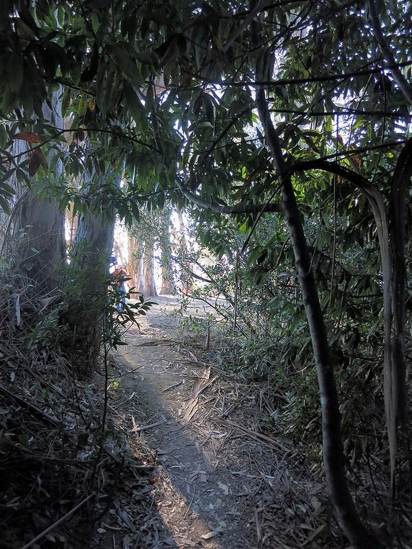 Berkeley Hills Tunnel
