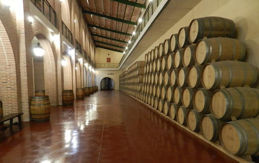 Visita Bodega Yllera Rueda Valladolid 14