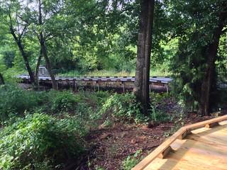 Swamp Rabbit Trail Boardwalk