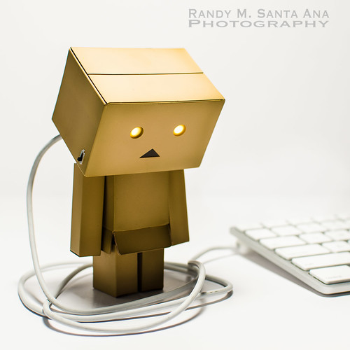Danbo Fully Charged.