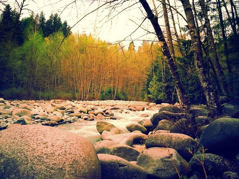 Lynn Canyon_02