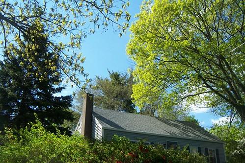 Gardens13May130119