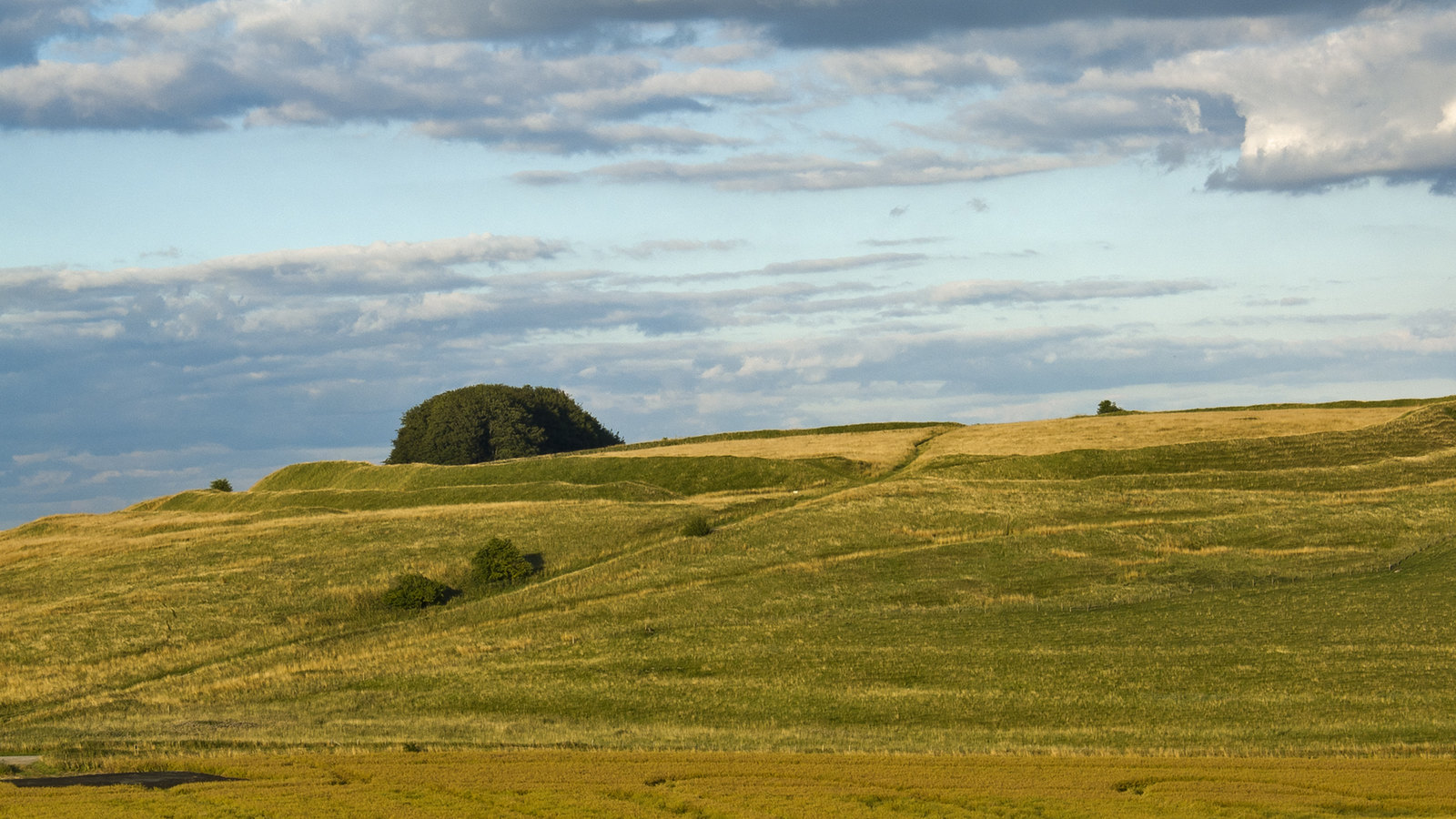 Barbury Castle from the South