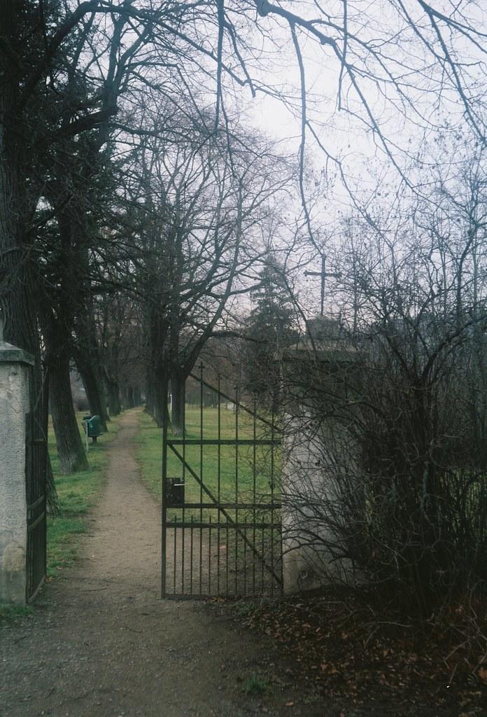 Agfa Billy Record 7.7 - Former Graveyard
