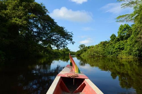 Cruising on still waters