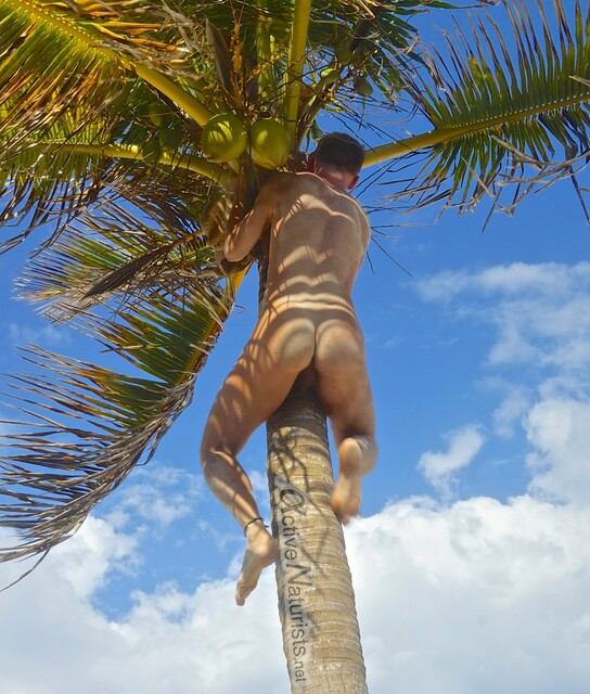naturist 0007 Sian Kaan beach, Quintana Roo, Mexico