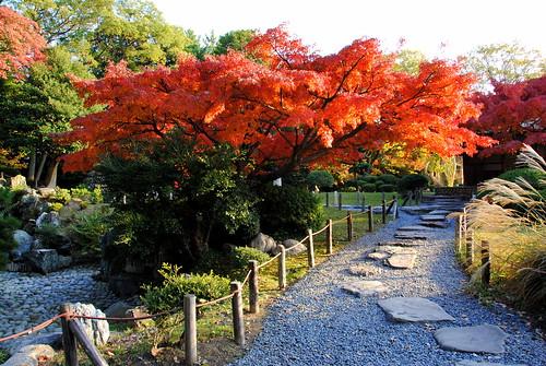 Fall Nagoyajo 200r