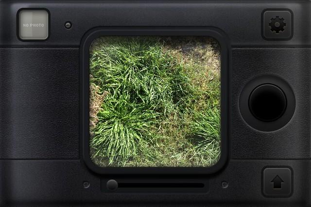 Camera Roll-3932