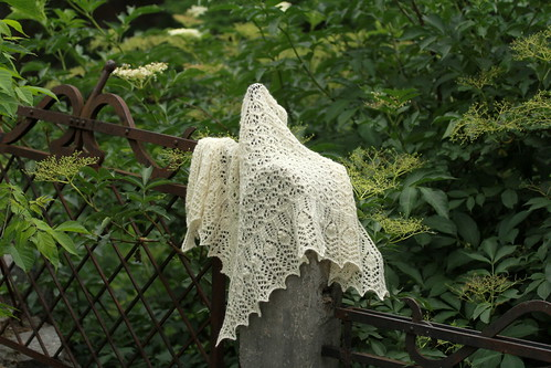 Crinoline Lace Shawl by infusionn