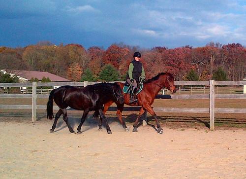 Ponying Brigid with Wizard. It's fun!